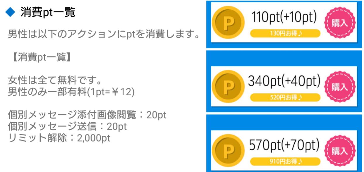 悪徳出会い系アプリ「EPI]料金