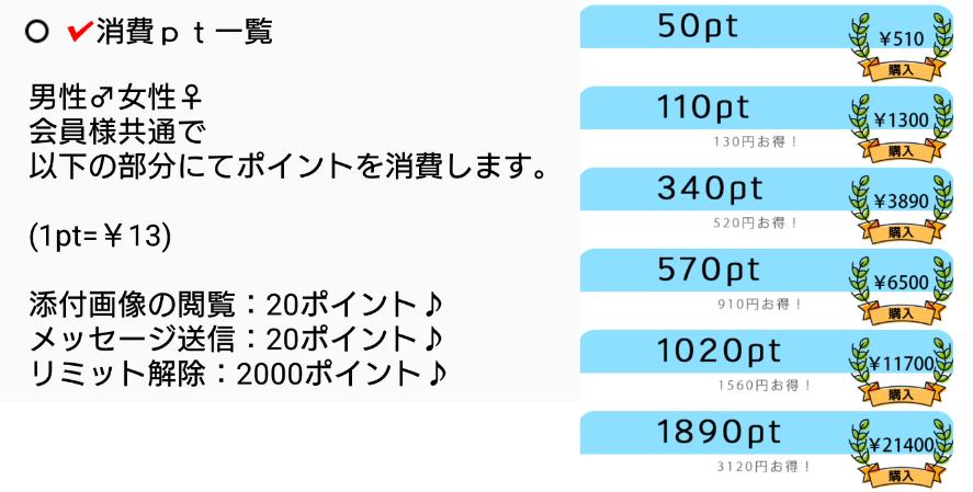 サクラ悪徳出会い系アプリ「スカッシュ」料金